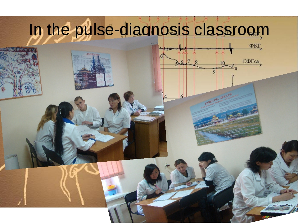 In the pulse-diagnosis classroom