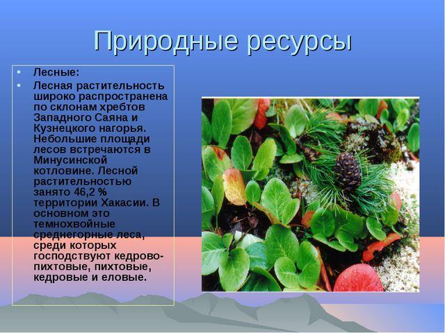 Природные ресурсы Лесные: Лесная растительность широко распространена по скло...