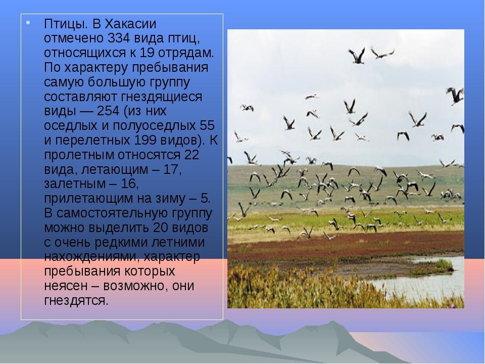 Птицы. В Хакасии отмечено 334 вида птиц, относящихся к 19 отрядам. По характе...