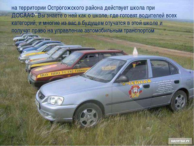 на территории Острогожского района действует школа при ДОСААФ. Вы знаете о не...