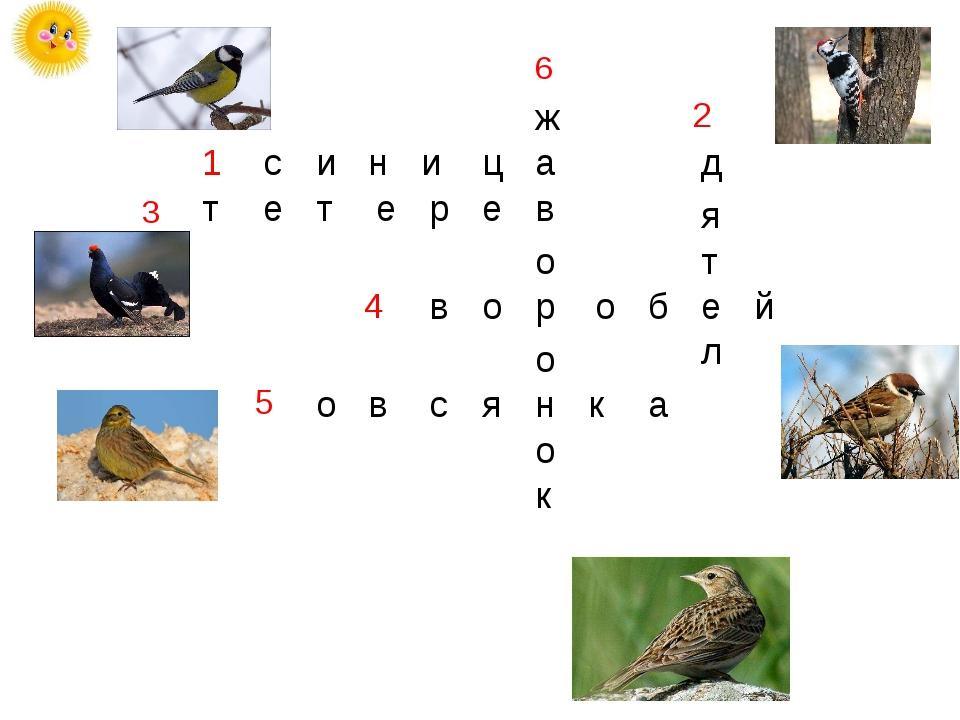3 6 с т и н и ц а о о б е й к о н о р о в ж р е в с я к а в о т я д л е т е 1...