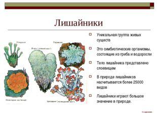 Лишайники Уникальная группа живых существ Это симбиотические организмы, состо
