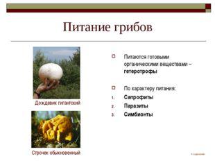Питание грибов Питаются готовыми органическими веществами – гетеротрофы По ха