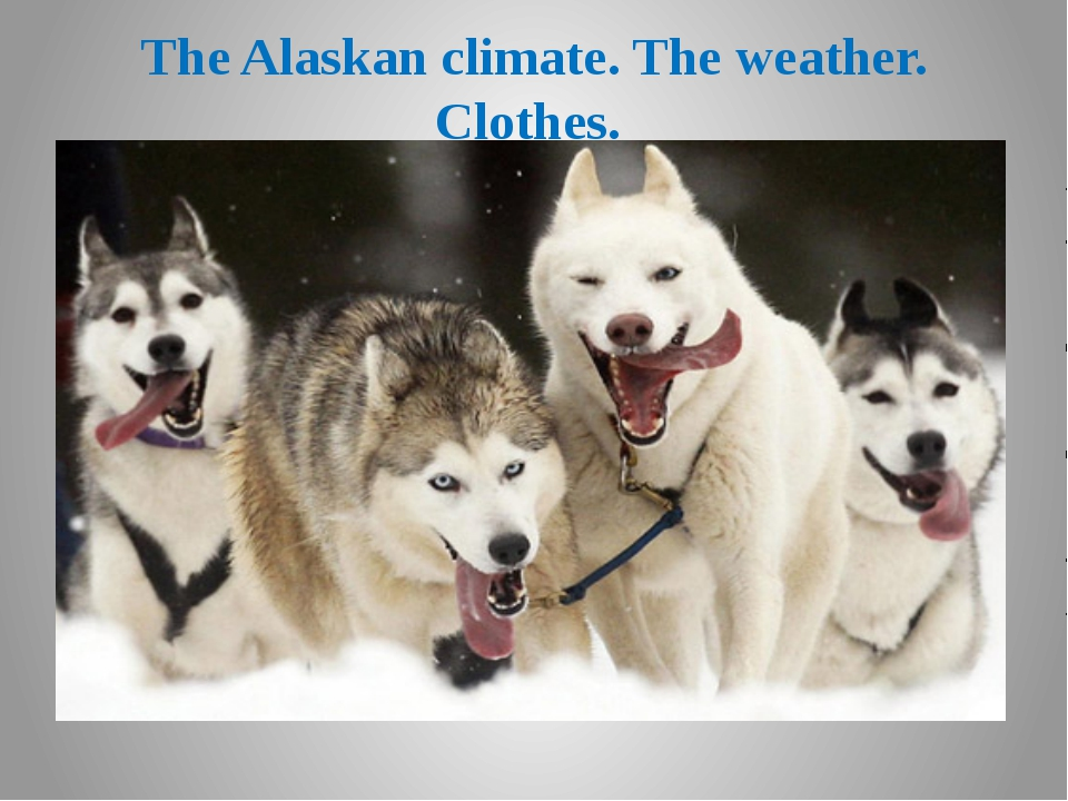 The Alaskan climate. The weather. Clothes.