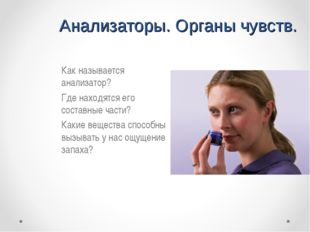 Анализаторы. Органы чувств. Как называется анализатор? Где находятся его со
