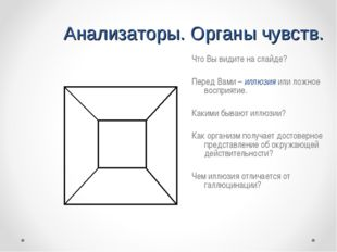 Анализаторы. Органы чувств. Что Вы видите на слайде? Перед Вами – иллюзия или