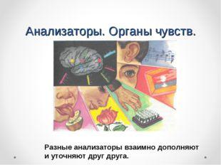 Анализаторы. Органы чувств. Разные анализаторы взаимно дополняют и уточняют д