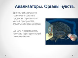 Анализаторы. Органы чувств. Зрительный анализатор позволяет опознавать предм
