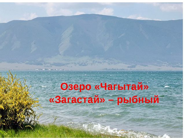 Озеро «Чагытай» «Загастай» – рыбный