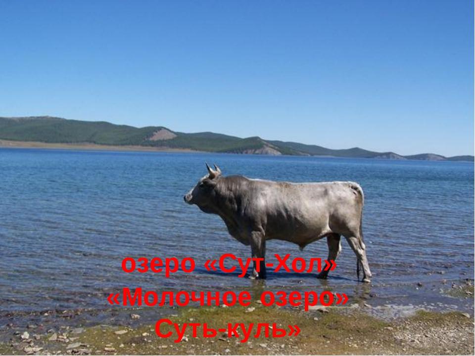 озеро «Сут-Хол» «Молочное озеро» Суть-куль»