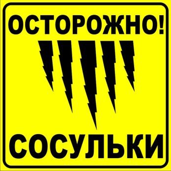 http://tulaznak.ru/uploads/infotab/sosyli1.jpg
