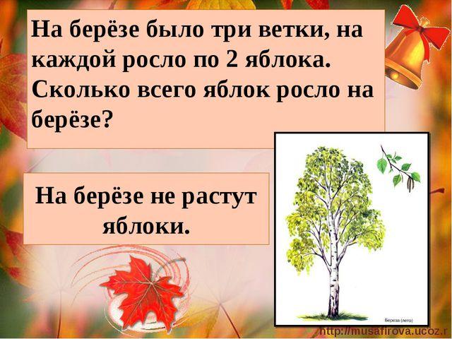 На берёзе не растут яблоки. На берёзе было три ветки, на каждой росло по 2 яб...
