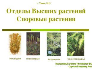 Отделы Высших растений Споровые растения Плауновидные Моховидные Хвощевидные