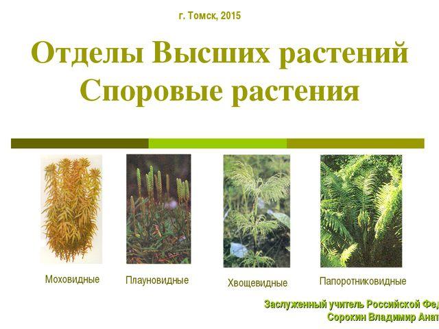 Отделы Высших растений Споровые растения Плауновидные Моховидные Хвощевидные...
