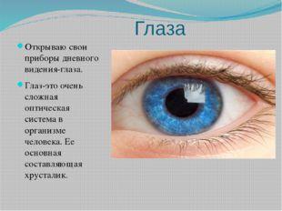 Глаза Открываю свои приборы дневного видения-глаза. Глаз-это очень сложная о