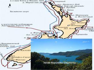 Первая кругосветная экспедиция. В начале января 1771 «Индевор» зашел в Батави