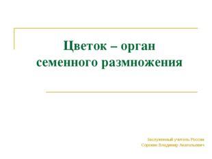Цветок – орган семенного размножения Заслуженный учитель России Сорокин Влади