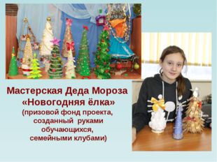 Мастерская Деда Мороза «Новогодняя ёлка» (призовой фонд проекта, созданный р
