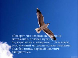 «Говорят, что человек, не знающий математики, подобен путнику, блуждающему в