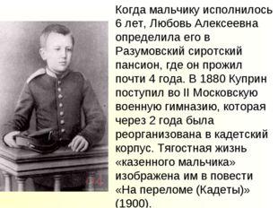 Когда мальчику исполнилось 6 лет, Любовь Алексеевна определила его в Разумовс