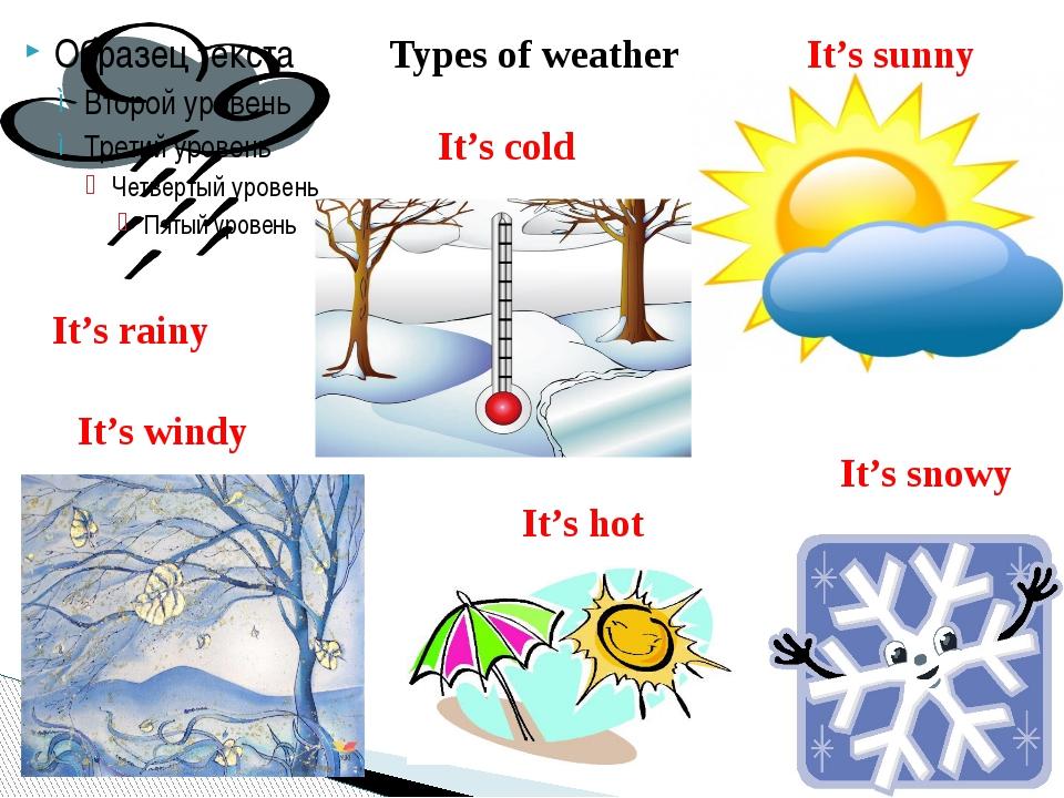 Types of weather It's rainy It's sunny It's cold It's windy It's snowy It's hot