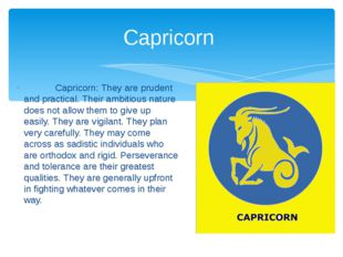 Capricorn: They are prudent and practical. Their ambitious nature does not a
