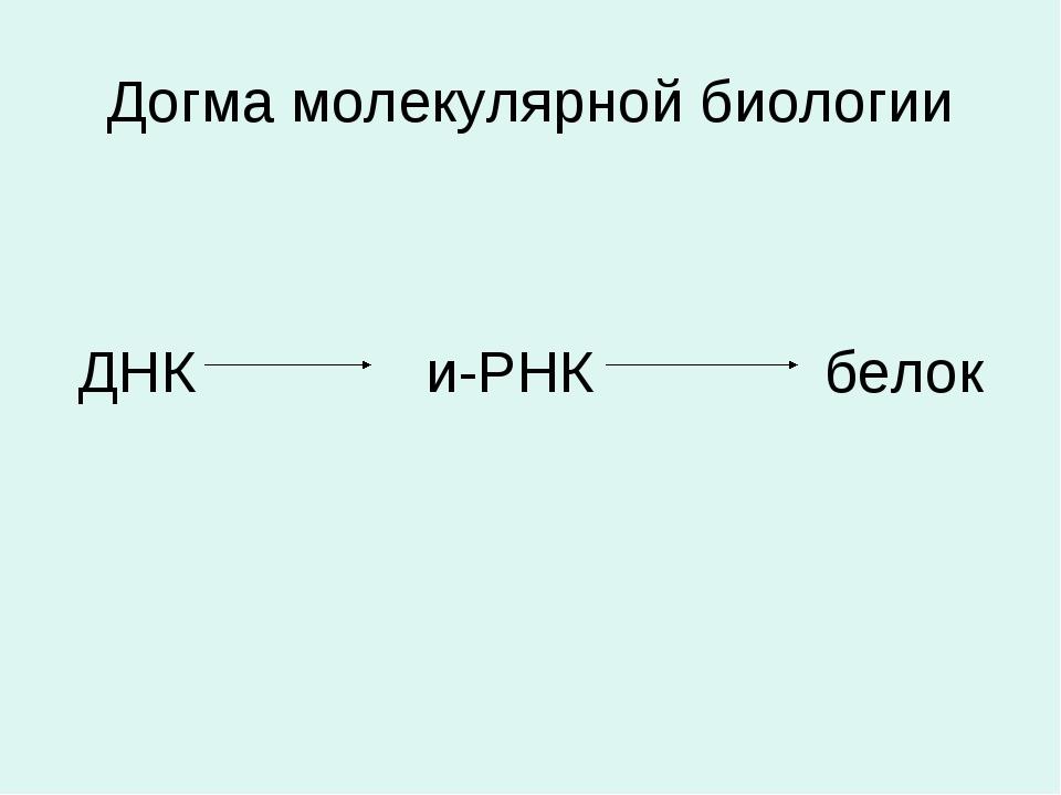 Догма молекулярной биологии ДНК и-РНК белок