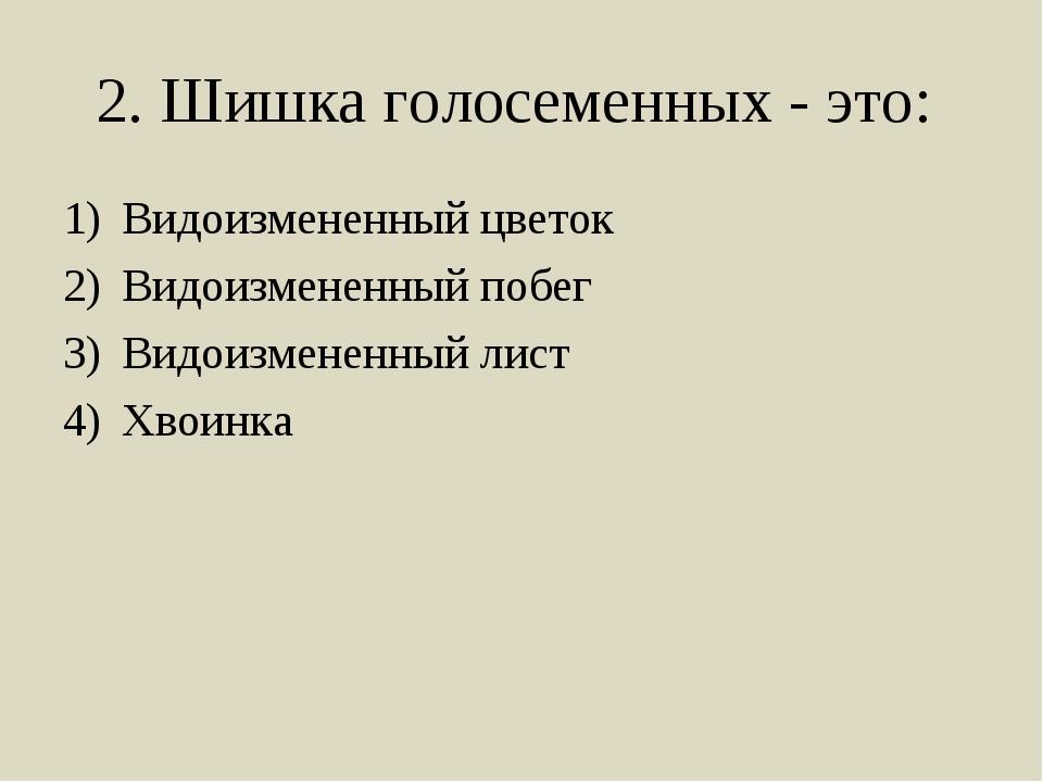 2. Шишка голосеменных - это: Видоизмененный цветок Видоизмененный побег Видои...