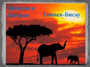 Далекая и близкая Гвинея-Бисау