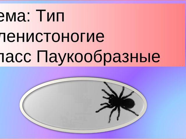 Тема: Тип Членистоногие Класс Паукообразные