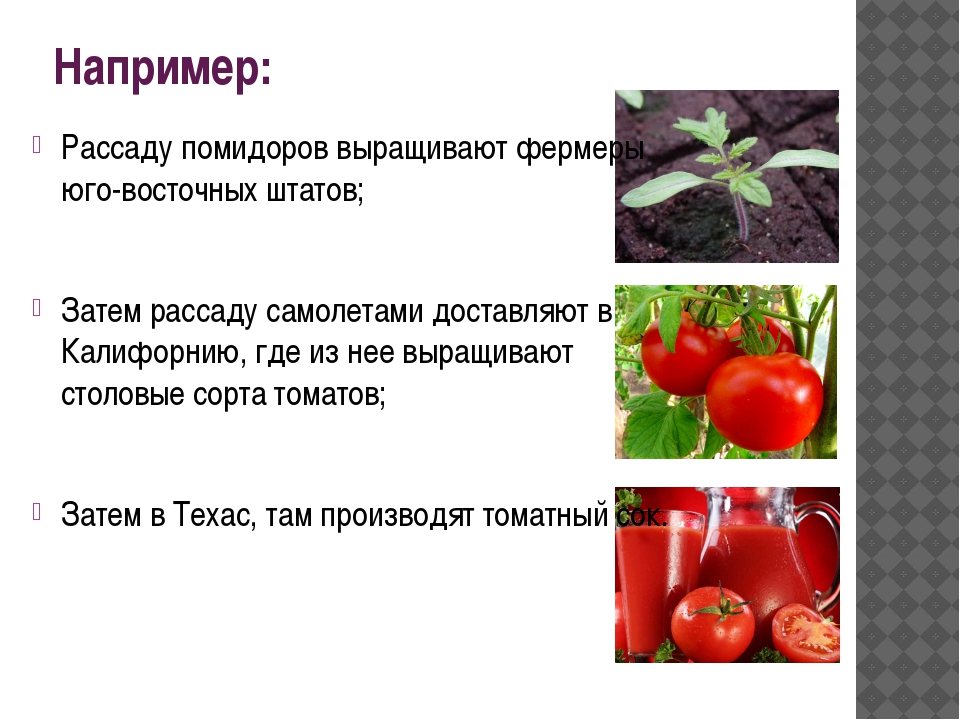 Например: Рассаду помидоров выращивают фермеры юго-восточных штатов; Затем ра...