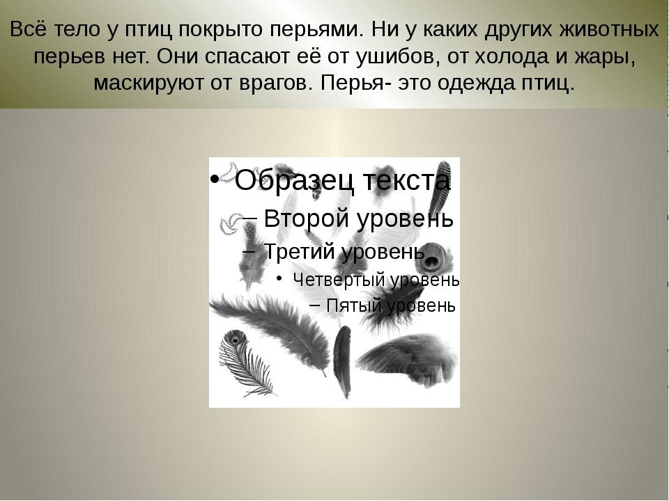 Всё тело у птиц покрыто перьями. Ни у каких других животных перьев нет. Они с...