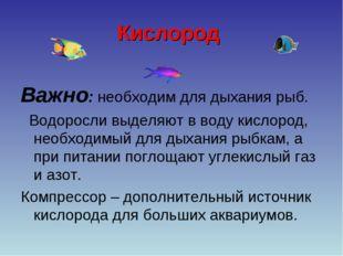 Кислород Важно: необходим для дыхания рыб. Водоросли выделяют в воду кислород