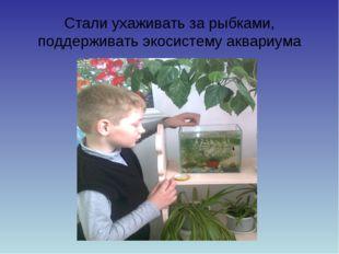 Стали ухаживать за рыбками, поддерживать экосистему аквариума