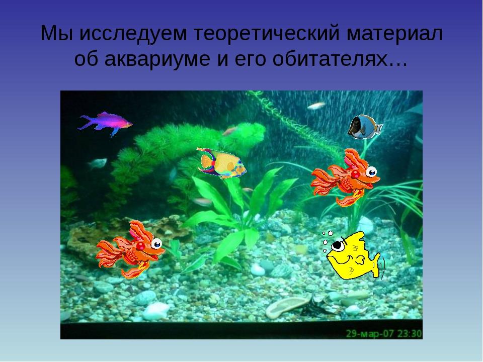 Мы исследуем теоретический материал об аквариуме и его обитателях…
