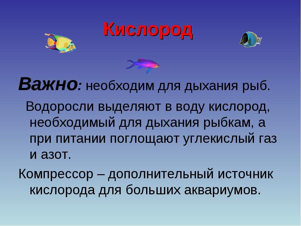 Кислород Важно: необходим для дыхания рыб. Водоросли выделяют в воду кислород...
