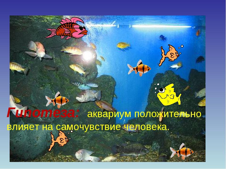 Гипотеза: аквариум положительно влияет на самочувствие человека.