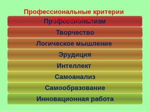 Профессиональные критерии успешности: