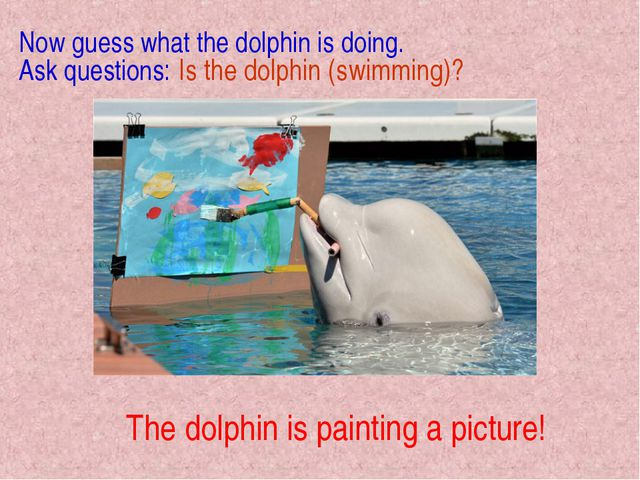 The dolphin is painting a picture! Now guess what the dolphin is doing. Ask q...