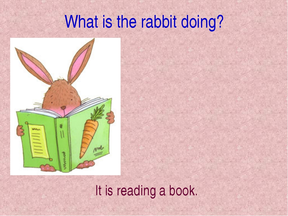 What is the rabbit doing? It is reading a book.