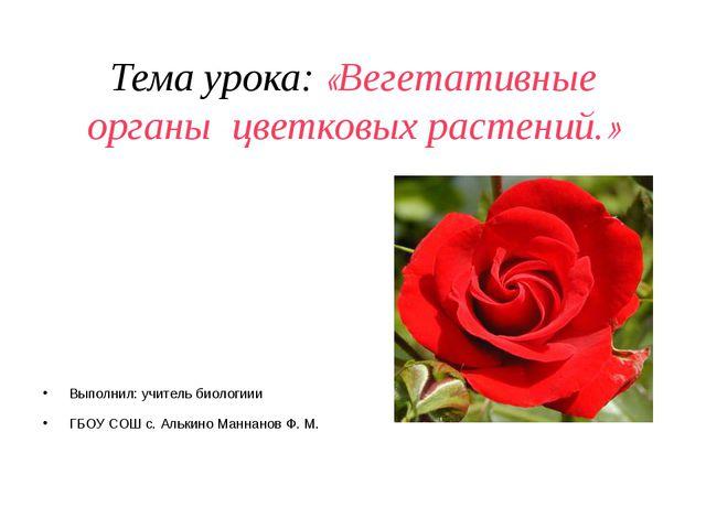 Тема урока: «Вегетативные органы цветковых растений.» Выполнил: учитель биоло...