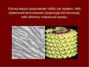 Капсид вируса представляет собой, как правило, либо правильный многогранник (
