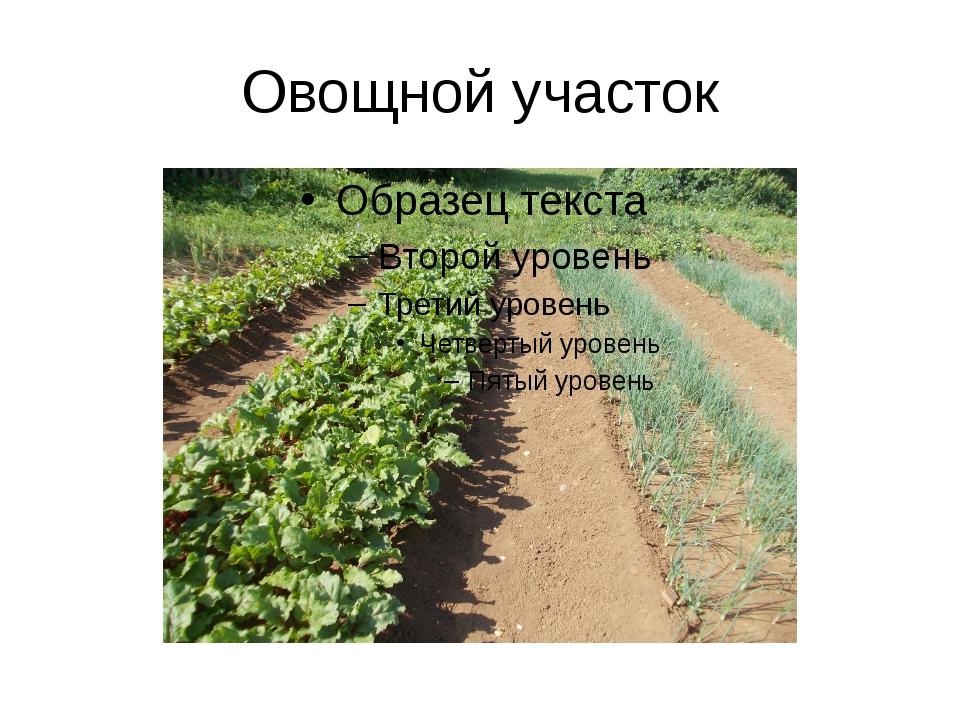 Овощной участок