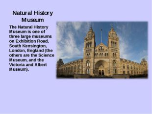 Natural History Museum The Natural History Museum is one of three large museu