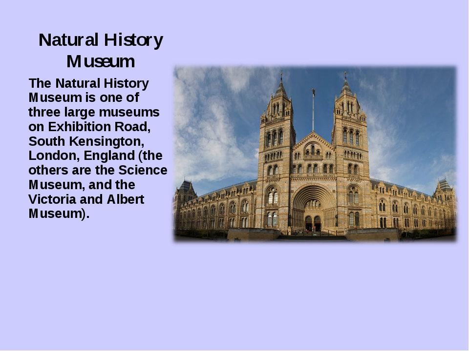 Natural History Museum The Natural History Museum is one of three large museu...