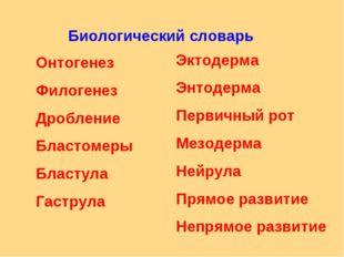 Биологический словарь Онтогенез Филогенез Дробление Бластомеры Бластула Гастр
