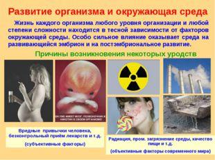 Развитие организма и окружающая среда Жизнь каждого организма любого уровня о