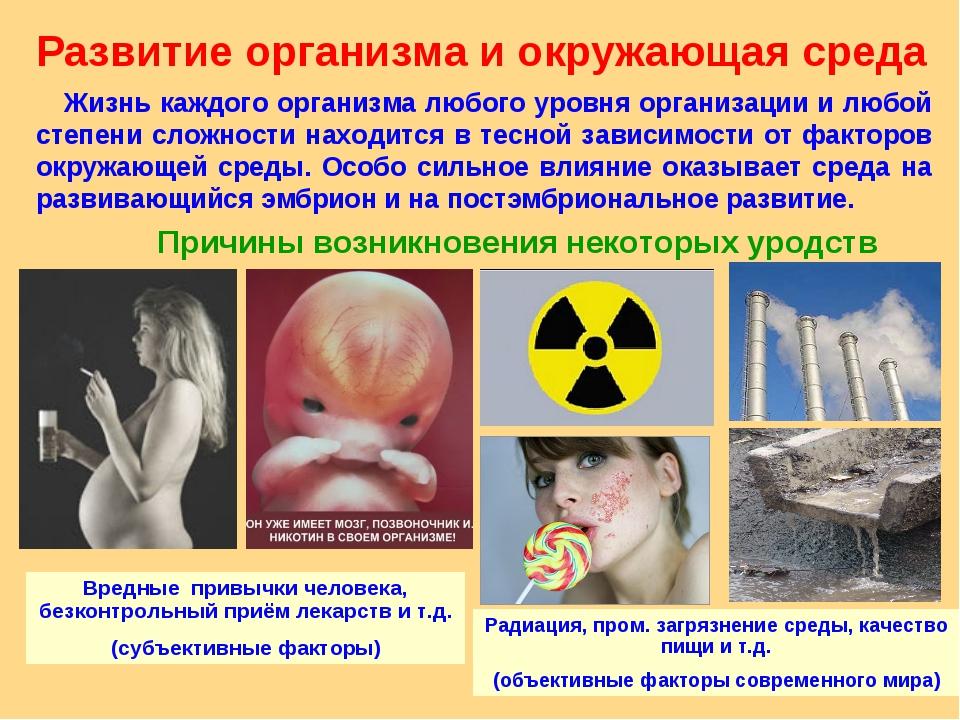 Развитие организма и окружающая среда Жизнь каждого организма любого уровня о...