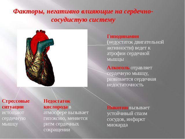 Факторы, негативно влияющие на сердечно-сосудистую систему Гиподинамия(недост...