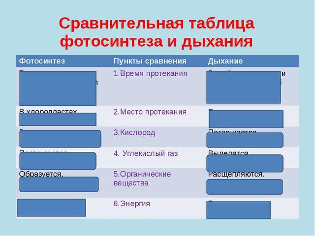 Сравнительная таблица фотосинтеза и дыхания Фотосинтез Пункты сравнения Дыхан...